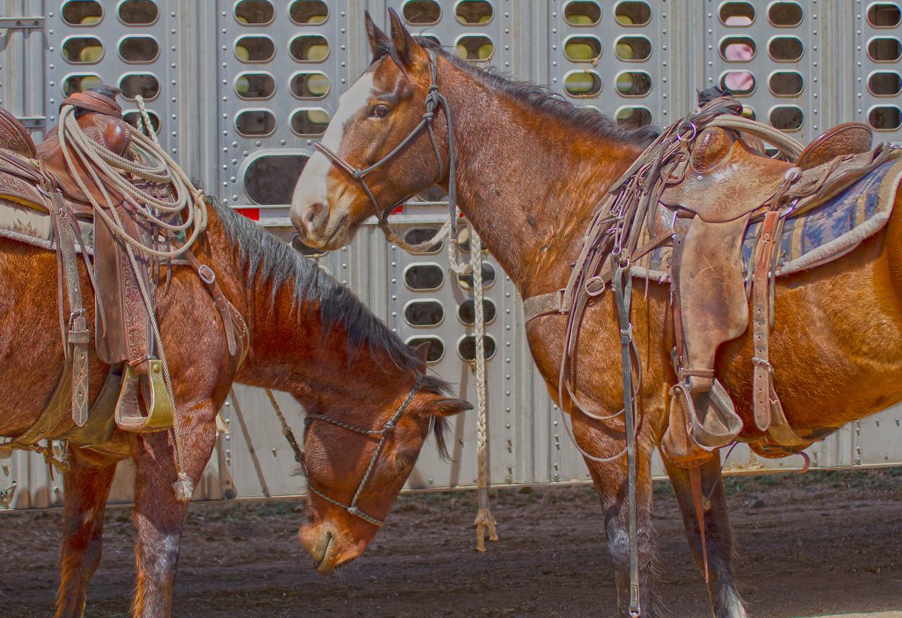Cave Creek Rodeo 1 April 2012 - 8-Edit