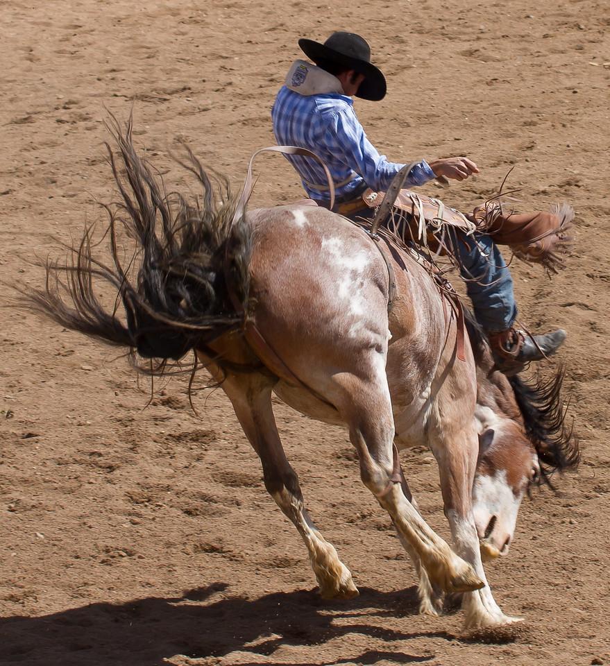 Cave Creek Rodeo 1 April 2012 - 29