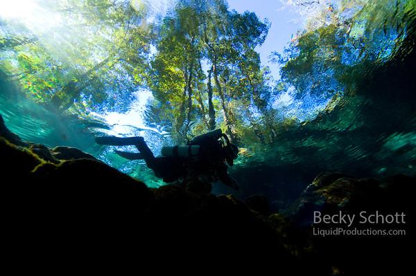 Rebreather diver in springs