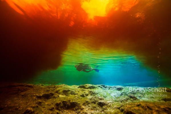 Tannic bridge over snorkeler