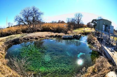 Del Rio spring