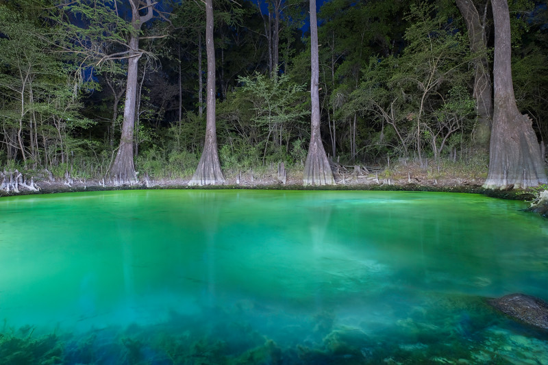 Privately Owned Sinkhole in Florida