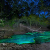 Mearson Springs on the Suwanee River, Lafayette County, Florida