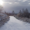 013-Mabie-Forest-Snow