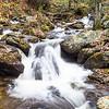 Anna Ruby Creek, Unicoi State Park, GA