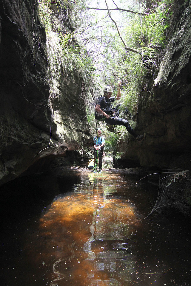 We picked a likely looking gully and dropped into it to get out of the heat on the ridge... and we found our canyon!