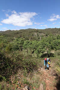 The landscape around Timor Caves Reserve.