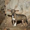 inside Sendero Cueva del Indio( Indian caves)