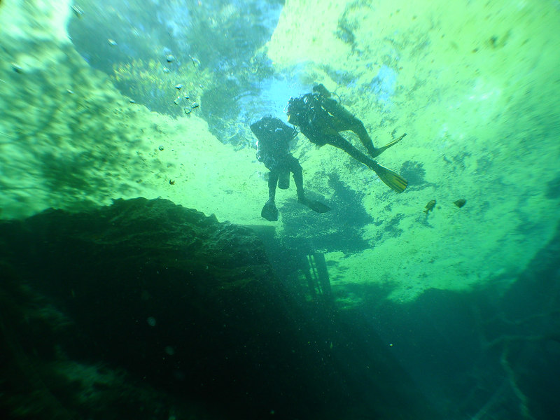 Divers on surface of Orange grove