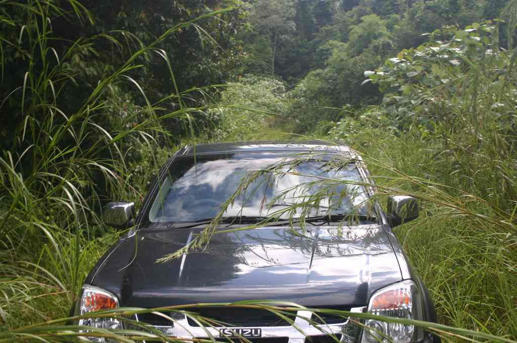 Driving through the jungle searching for caves :-)