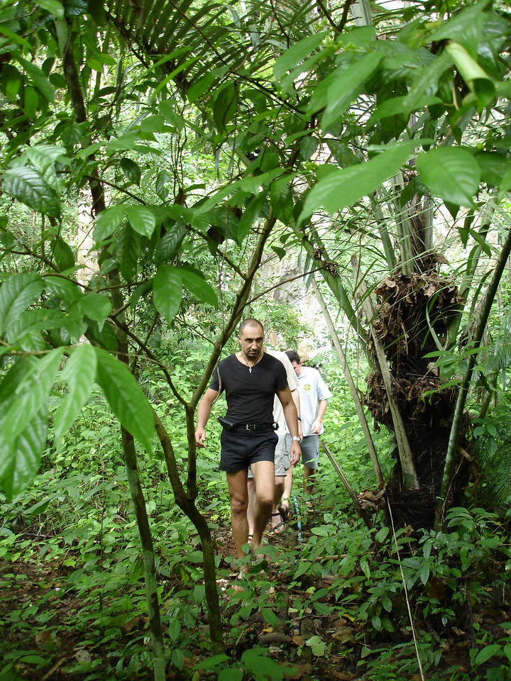 Looking for new caves in the jungle