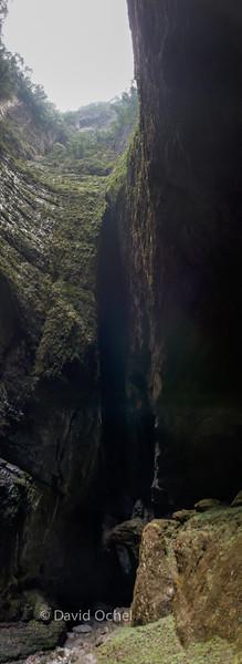 View from inside Da Luo Dang Tiankeng.