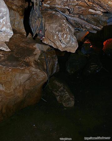 Cave city July 2006