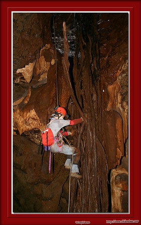 'Root of the Matter' This picture, taken in Lobatse cave #1, won a merit award at the National Speleological Societies 2006 print salon.