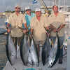 Cayman Islands Angling Club : 39 galleries with 2000 photos