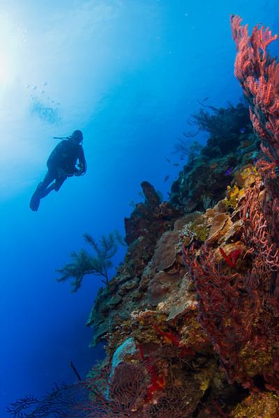 20140606_Grand_Cayman_0002