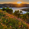 whale rock sunset flowers 0643-