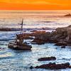 cayucos shipwreck 8226-