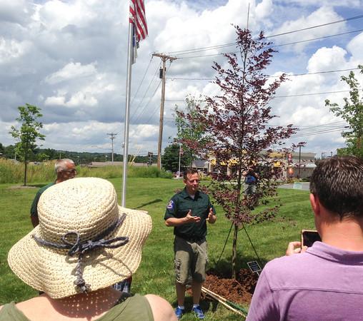 2013-07 Lucas Tree Memorial July 5