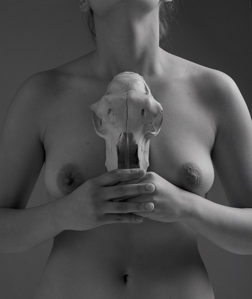 sm  skull cecilia bk8