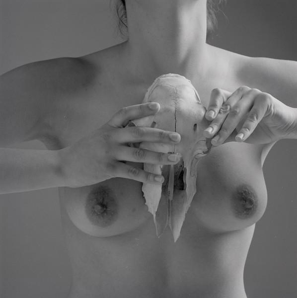 sm  skull#2 cecilia bk8