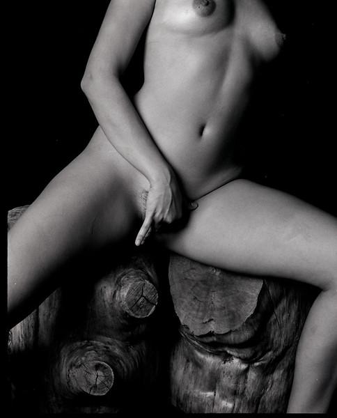 stumps pleasure cecilia bk8