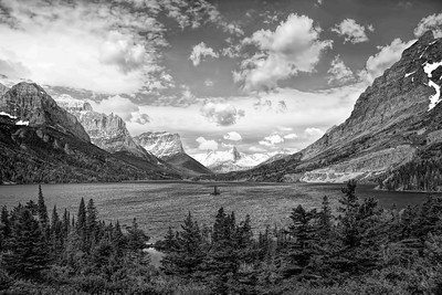 Wild Goose Island-Black and White