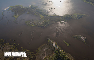 Shell Mound Dock and Hog Island, Lower Suwannee Refuge - June 2017 - Photo by Pat Bonish