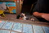 Squze Sir, may I haz another beer - The Tiki Bar is Dog Friendly - Photo by Pat Bonish