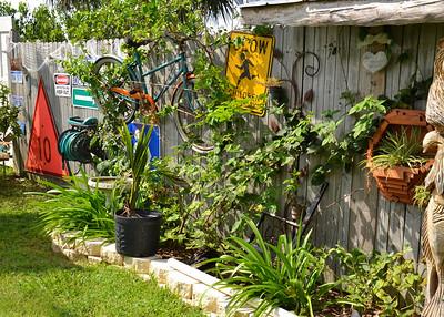 around the back yard