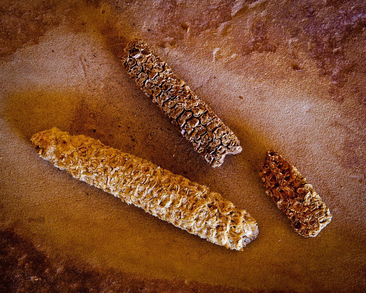 """""""Fishmouth Cave Corn Cobs"""""""