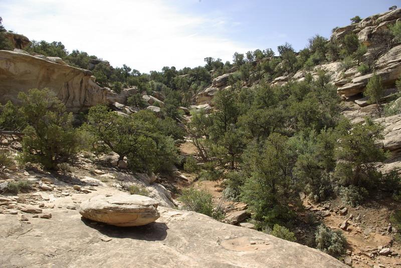 Upper Sheiks Canyon, near Yellow House Ruin