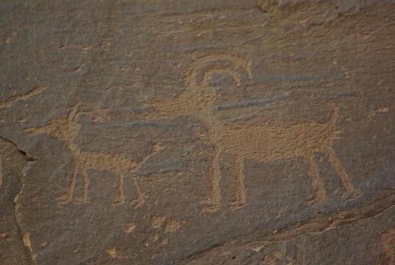 Bighorns, Sand Island Petroglyph Panel, Bluff, Utah
