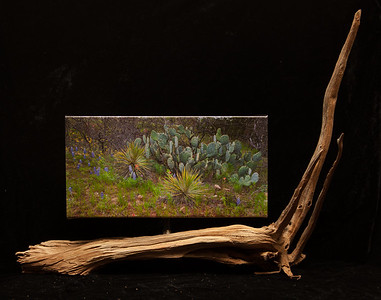 Texas Flower Bed - SOLD