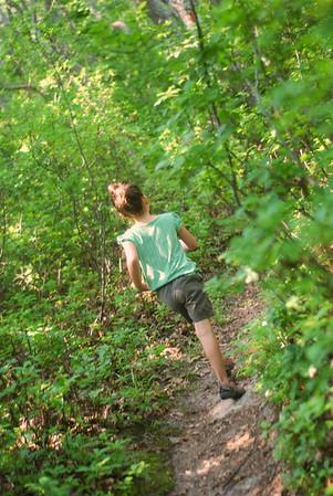 Cedar Tree Neck