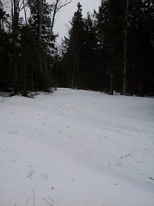 2013-01-12 12 31 46