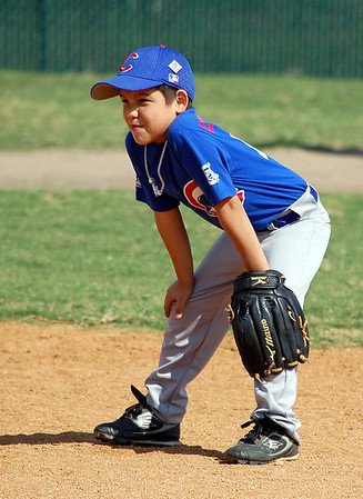 Cedar Park Little League