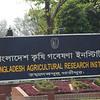 Bangladesh-344