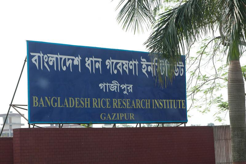Bangladesh-343