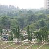 Bangladesh-251