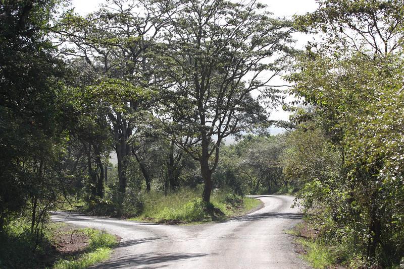 Nairobi (145)