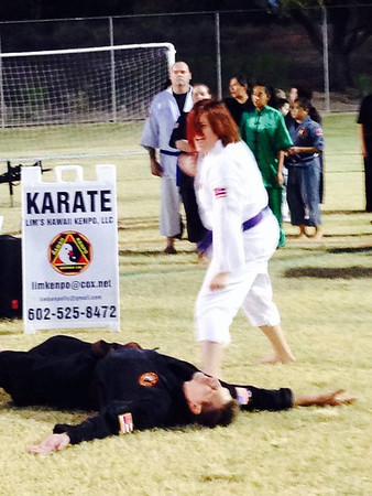 Celebrate Mesa Lim Kenpo Family Demo