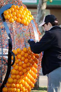 Oranges-12
