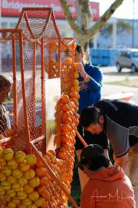 Oranges-21