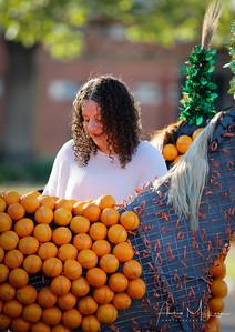 Oranges-8