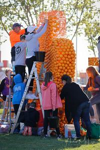 Oranges-26