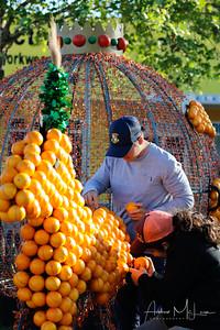 Oranges-11