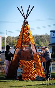 Oranges-27