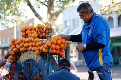 Oranges-19