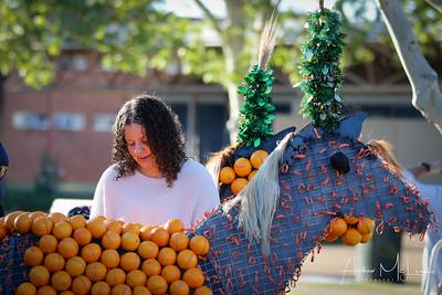 Oranges-9